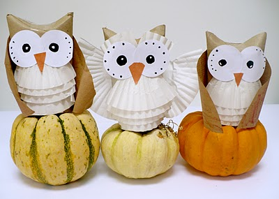 Amelies House - owl cupcake liners