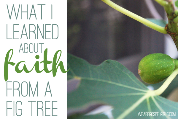 Our faith is meant to be used. It's meant to fill us so full of the Holy Spirit that His light overflows to everyone around us through our good gifts and good deeds. If not, it might as well wither up and die like the cursed tree we read about in Mark 11. Read the full post at the link.